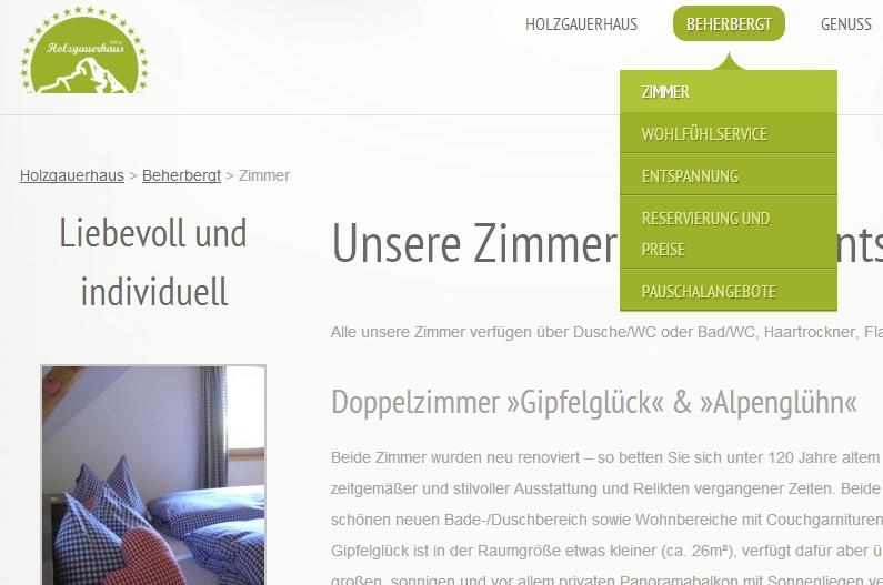 Web do Mês - Holzgauerhaus.com