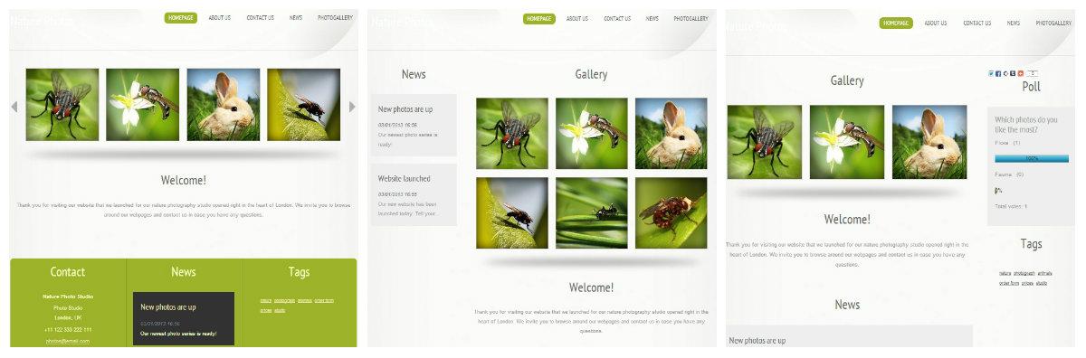 Choosing the website layout