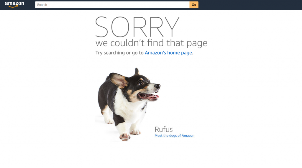 Example of a 404 error page from Amazon