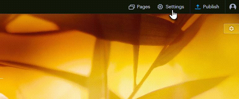 In the Webnode website builder, click on Settings.